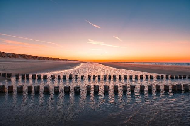 Prachtig uitzicht van boomstammen van hout in het water op strand gevangen in oostkapelle, nederland Gratis Foto
