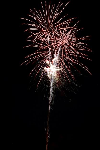 Prachtig vuurwerk 's nachts Gratis Foto