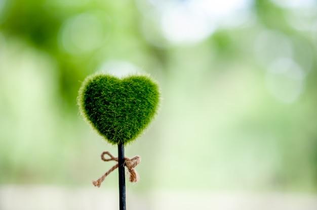 Prachtige groene hand en hart beelden valentijnsdag concept Premium Foto