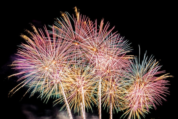Prachtige kleurrijke vuurwerkvertoning 's nachts voor vieren Gratis Foto