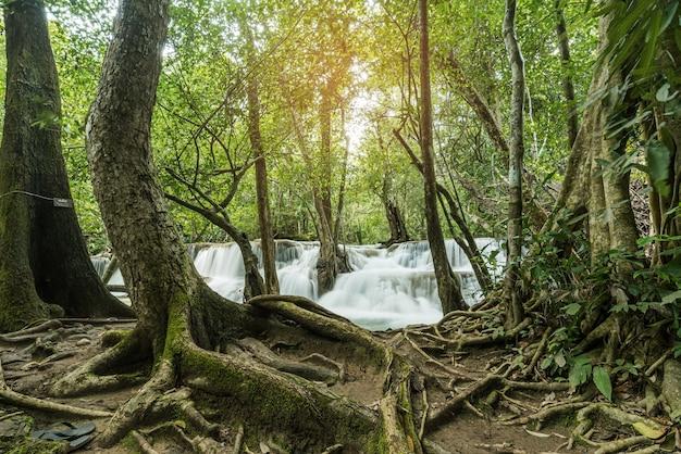 Prachtige waterval, bos achtergrond, landschap Premium Foto