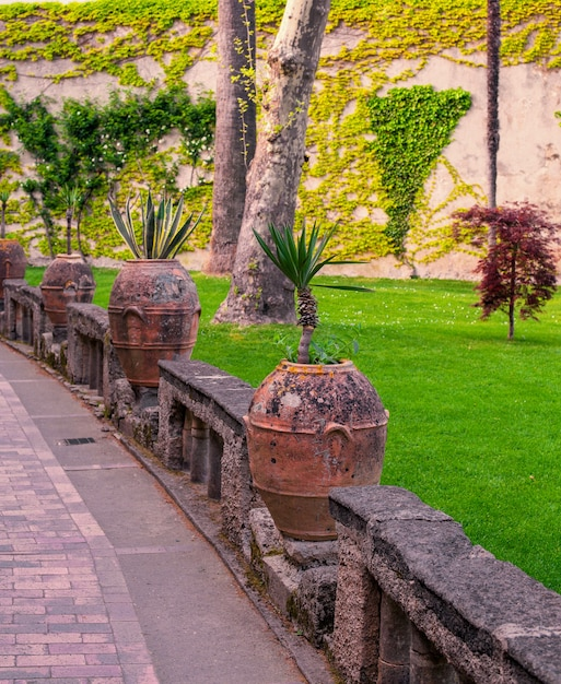 Prentbriefkaart met terras met bloemen en bomen in de tuin amalfikust, campanië, italië Premium Foto