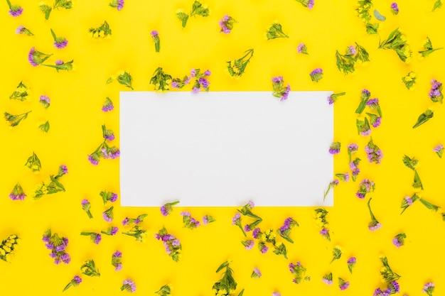 Rechthoekig leeg witboek rond de purpere bloemen tegen gele achtergrond Gratis Foto