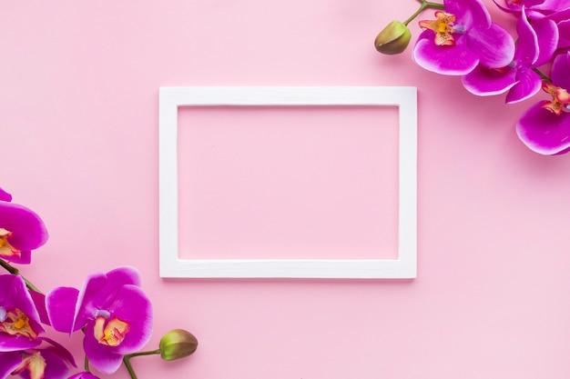 Regeling van orchideebloemen op een roze exemplaar ruimteachtergrond Gratis Foto