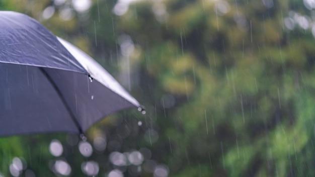 Regentijd met zwarte paraplu Premium Foto