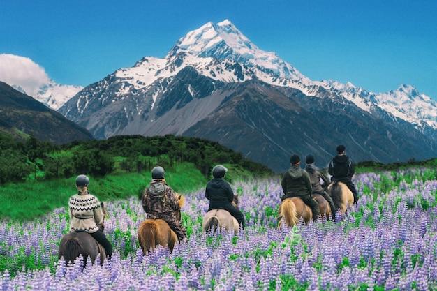 Reiziger paard op mt cook, nieuw-zeeland. Premium Foto