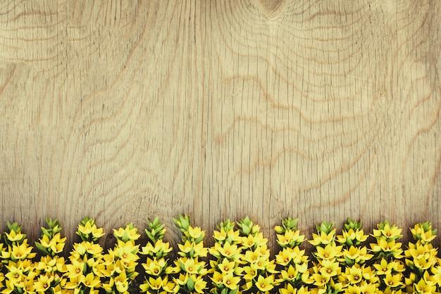 Rij van gele veldbloemen op hout Premium Foto
