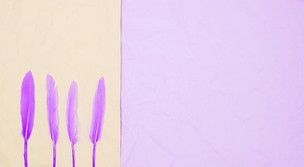 Rij van paarse veren op dubbele achtergrond Gratis Foto