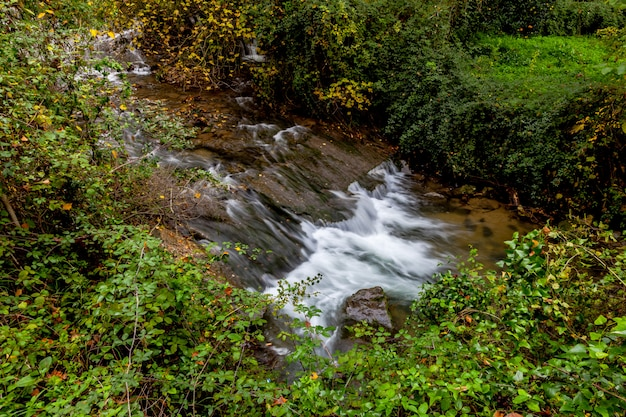 River majaceite Premium Foto