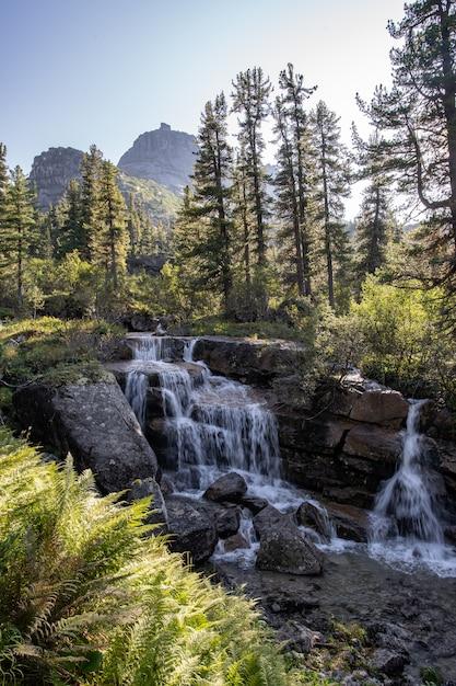 Rivier die door de herfst kleurrijk bos vloeit. mooie herfst rivier met rotsen en bomen Premium Foto