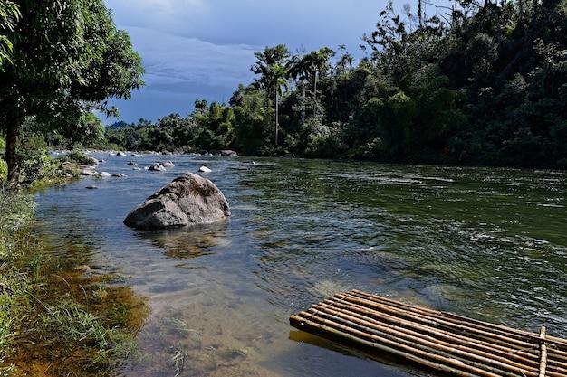 Rivier met veel rotsen en een vlot omgeven door prachtige groene bomen Gratis Foto
