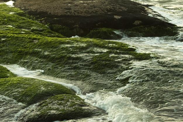 Rivier stroomt door de rotsen bedekt met groen mos Gratis Foto