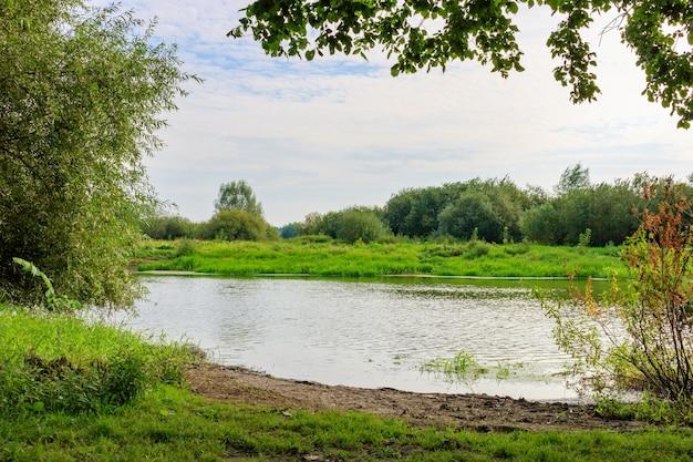 Rivieroever met groen gras en bomen met struiken op de achtergrond van een wateroppervlak in zonnige herfstochtend. rivierlandschap Premium Foto