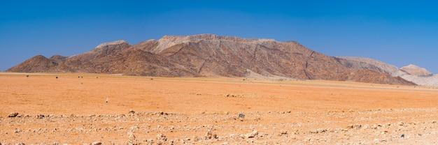 Roadtrip in de namib-woestijn, namibië. afrika. Premium Foto