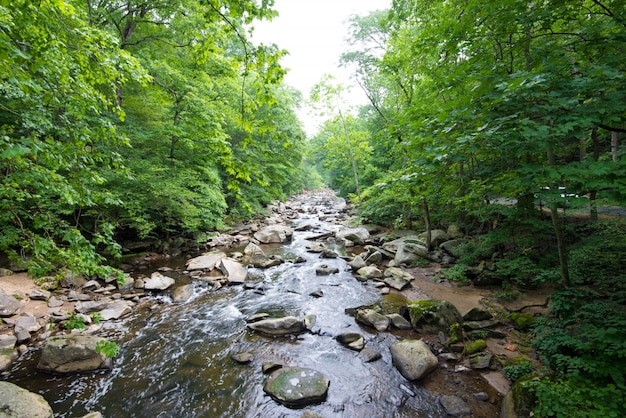 Rock creek park Gratis Foto