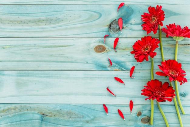 Rode bloemen op blauw houten bureau Gratis Foto
