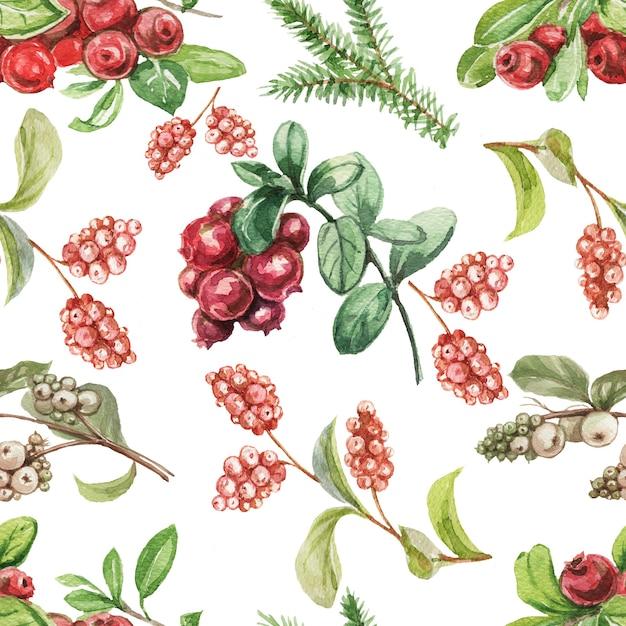 Rode bosbessen. hand getekend aquarel patroon. Premium Foto