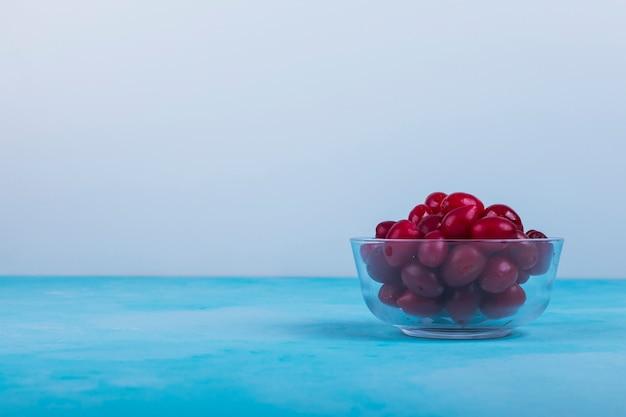 Rode cornels in een glazen beker op blauw. Gratis Foto