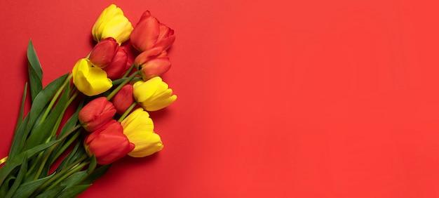 Rode en gele tulpen op rood Premium Foto