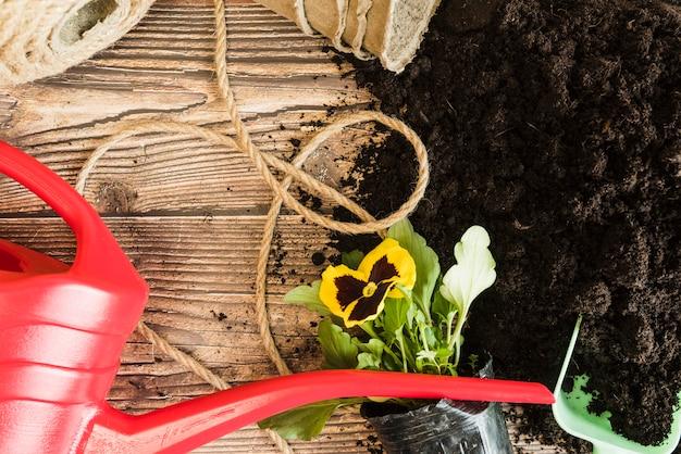 Rode gieter; touw; viooltje bloempot met vruchtbare grond op houten bureau Gratis Foto