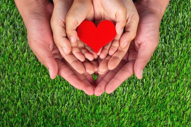 Rode hartvorm in de handen van het familielid het houden Gratis Foto
