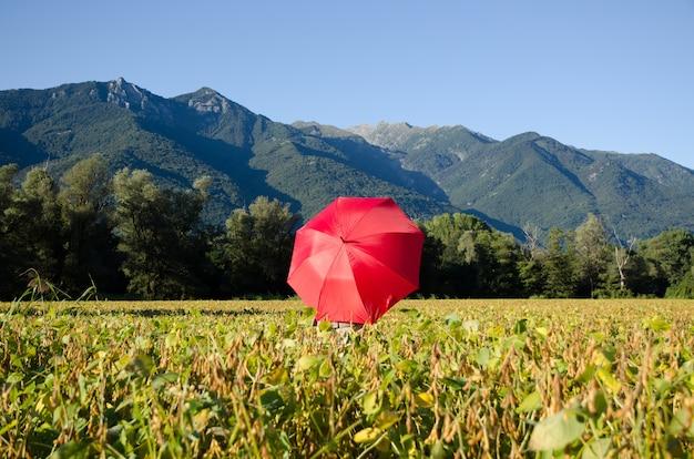 Rode paraplu in een veld omgeven door heuvels bedekt met groen onder het zonlicht en een blauwe lucht Gratis Foto