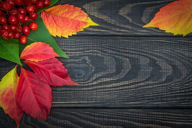 Rode viburnumbessen en herfstbladeren op zwarte planken Premium Foto