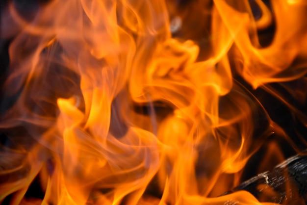 Rode vlammen van het vuur flitsen op uit het brandhout Premium Foto