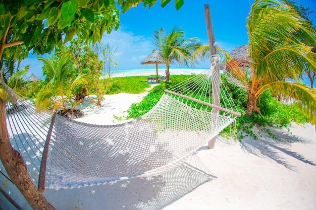 Romantische gezellige hangmat onder kokospalm in tropisch paradijs in heldere zonnige zomerdag Premium Foto