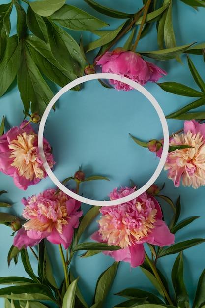 Rond frame. roze pioenrozen op blauwe achtergrond Premium Foto