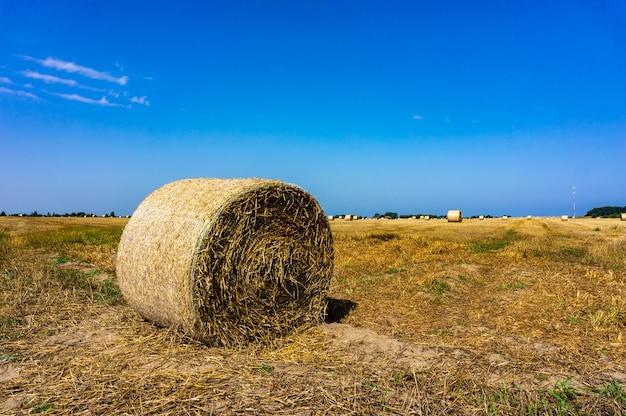 Ronde hooibaal in de velden met de blauwe lucht Gratis Foto