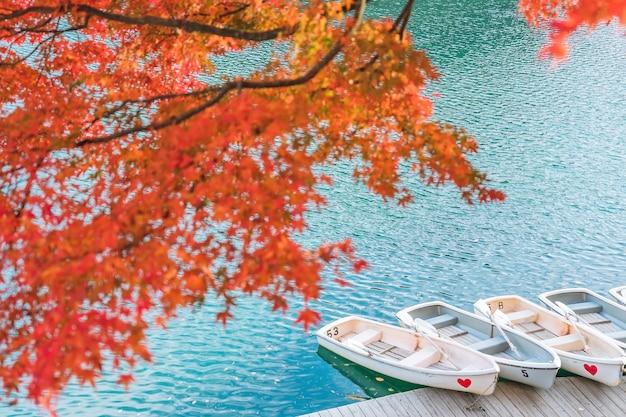 Rood esdoornblad op goshikinuma of five coloured pond. een populaire bestemming in bandai highlands in de herfst in de prefectuur fukushima, japan Premium Foto