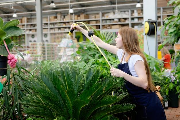 Roodharige jonge vrouwenarbeider in de serre gietende installaties van de installatiemarkt en het glimlachen Premium Foto