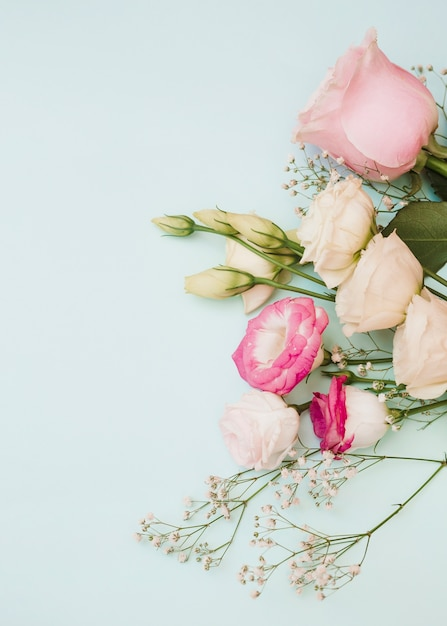 Roos; eustoma en baby's-adem bloemen op blauwe achtergrond Gratis Foto