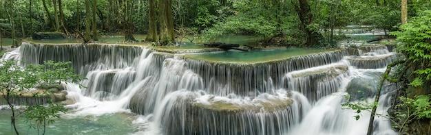 Ropical regenwoud bij srinakarin dam Premium Foto