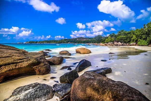 Rotsen op een strand omgeven door groen en de zee onder het zonlicht in praslin op de seychellen Gratis Foto