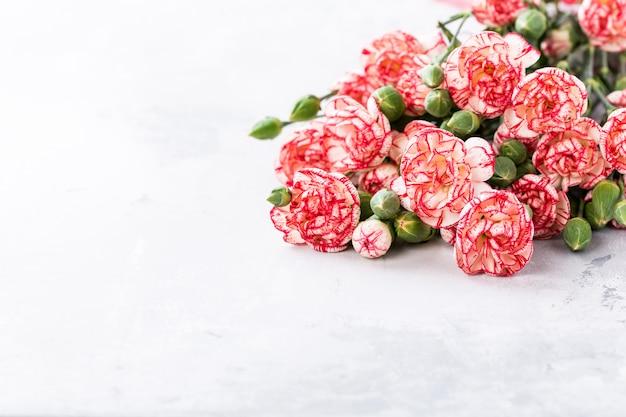 Roze anjerbloemen Premium Foto