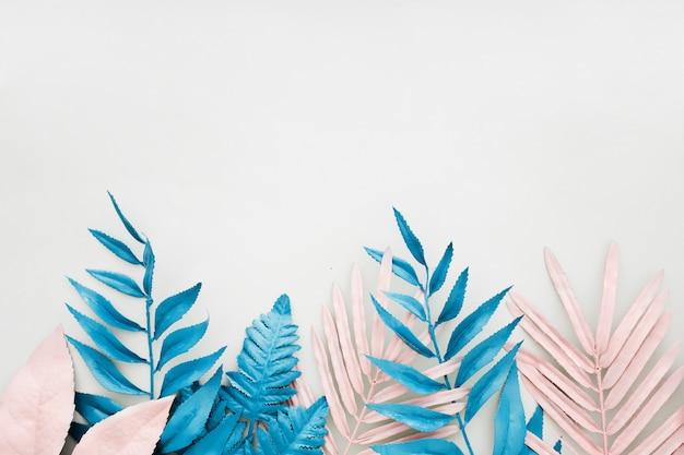 Roze en blauw tropisch palmblad in levendige gewaagde kleur op witte achtergrond. Gratis Foto