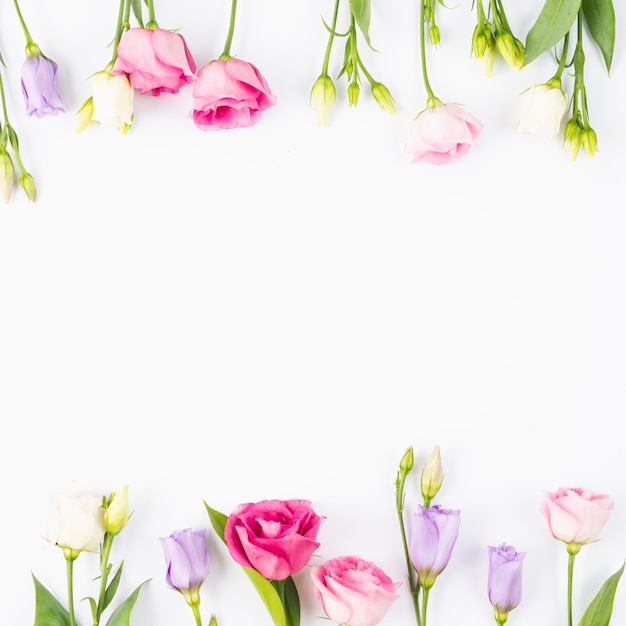 Roze en violet bloemenkader Gratis Foto