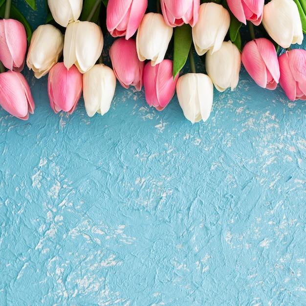 Roze en witte tulpen op grunge lichtblauwe textuur Gratis Foto