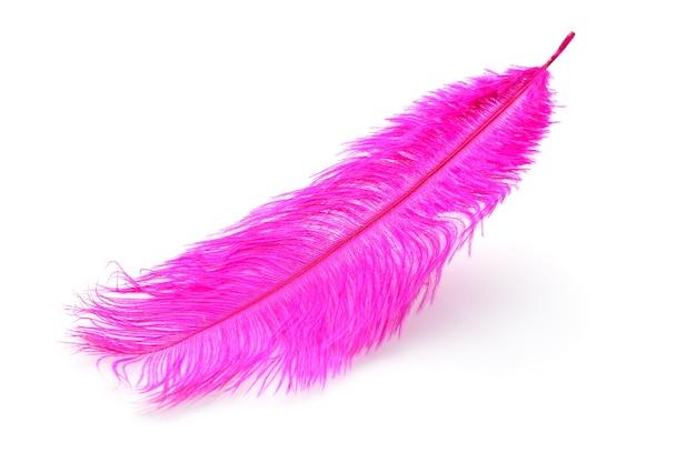 Roze geverfde struisvogelveren close-up geïsoleerd Premium Foto
