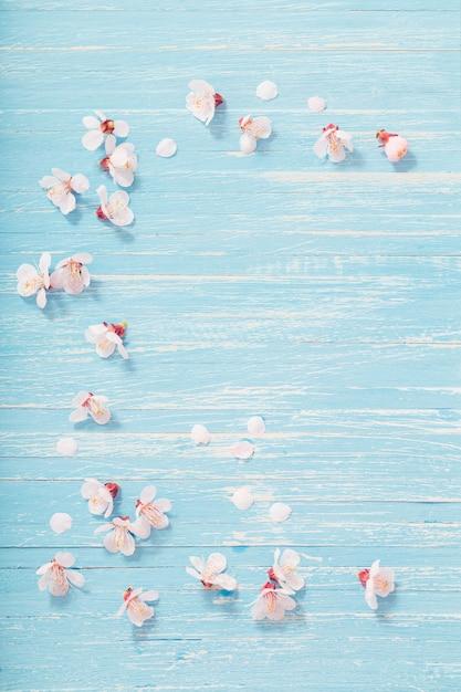 Roze kersenbloemen op houten achtergrond Premium Foto