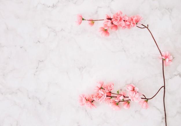 Roze kersenbloesem over de marmeren gestructureerde achtergrond Gratis Foto