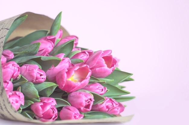 Roze lente tulpen op een roze achtergrond Premium Foto