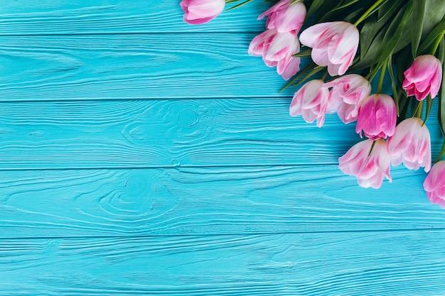 Roze tulpen op een houten blauwe achtergrond. bovenaanzicht en vlak leggen. Premium Foto