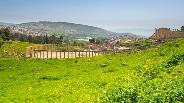 Ruïnes in de oude stad jerash in jordanië op een zonnige lentedag op een groene weide Premium Foto