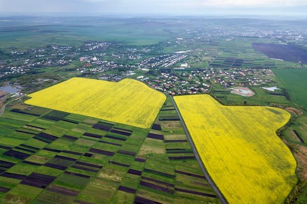 Rurale landschap op lente of zomer dag. luchtfoto van groene, geploegde en bloeiende velden, huis daken op zonnige dageraad. drone fotografie. Premium Foto