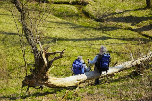 Rusten. leeftijd familie paar man en vrouw in toeristische outfit wandelen op groen gazon in de buurt van bomen en kreek in zonnige dag. concept van toerisme, gezonde levensstijl, ontspanning en saamhorigheid. Gratis Foto