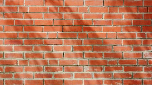 Schaduw van boomblad en tak op oranje antieke bakstenen muur Premium Foto