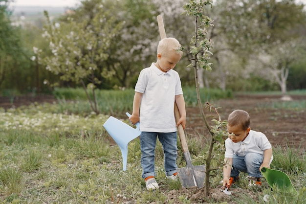 Schattige kleine jongens die een boom op een park planten Gratis Foto